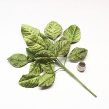 Vintage Moss Green Velvet Rose Leaves